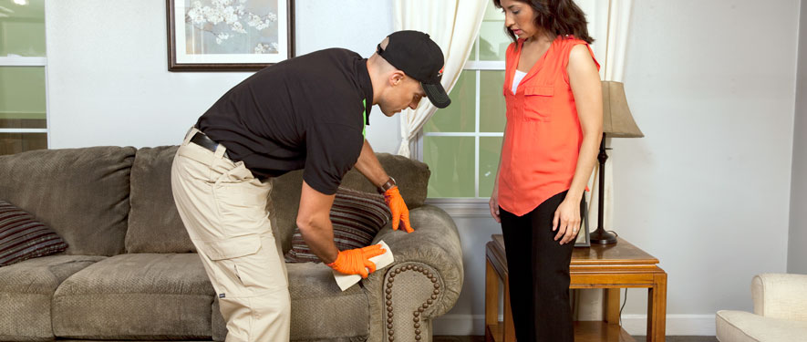 Woodbridge, CA carpet upholstery cleaning