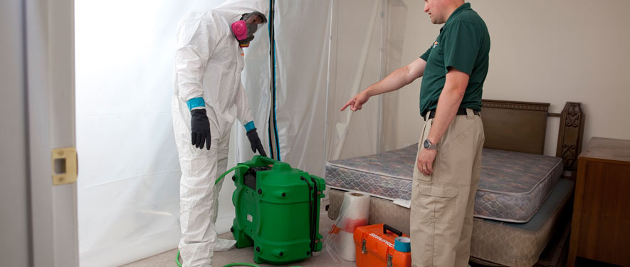 Woodbridge, CA mold removal process